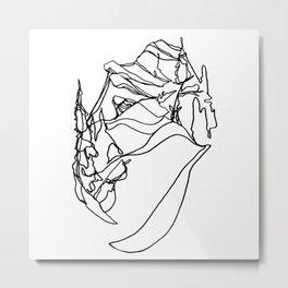 Ridge Walks :: Whitewater :: Single Line Metal Print