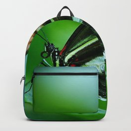 Papilio Rumanzovia Butterfly Backpack