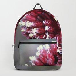 Macro of Round-Headed Leek Flower Allium Sphaerocephalon Backpack