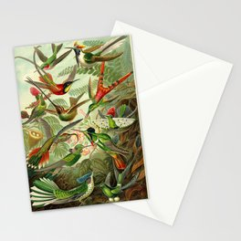 Ernst Haeckel Trochilidae 1904 Poster Stationery Cards