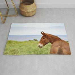 Hawaii loves horses Rug