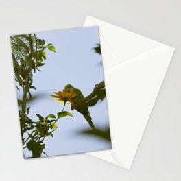 Birds from Pantanal Periquito-de-encontro-amarelo Stationery Cards