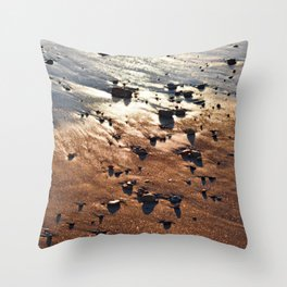 Bronze Reflection from Narragansett Sunset Throw Pillow