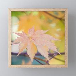 Crisp Framed Mini Art Print
