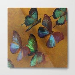Butterflies In Exquisite Flight Metal Print