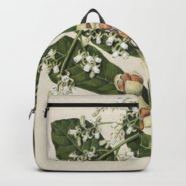 Antique plant Kohekohe drawn by Sarah Featon(1848 - 1927) Backpack