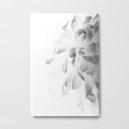 flower close up - black/white - five Metal Print