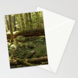 New Life From a Fallen Tree Stationery Cards
