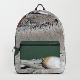 Brown Pelican at Rest Backpack