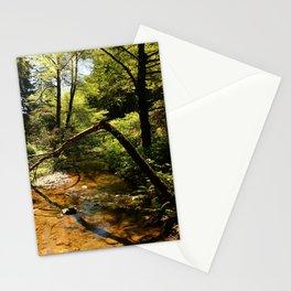 Muir Woods Impression Stationery Cards