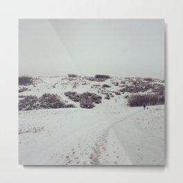 Snow Days in Calgary Metal Print