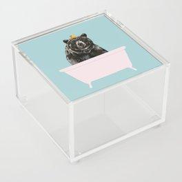 Big Bear in Bathtub Acrylic Box