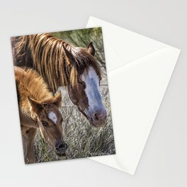 Wild Foal with Dad Stationery Cards