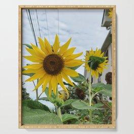 Sunflowers   Rehoboth Beach, DE Serving Tray
