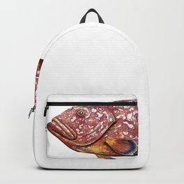 Dusky grouper or merou Backpack