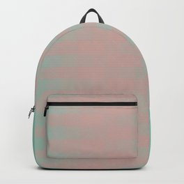 Combination 2 Backpack