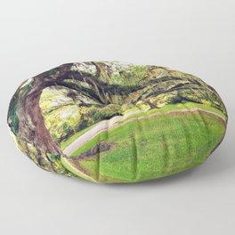 Live Oak Tree with Spanish Moss Floor Pillow