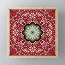 Really red radishes kaleidoscope! Framed Mini Art Print