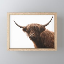 Highland cow with white background Framed Mini Art Print