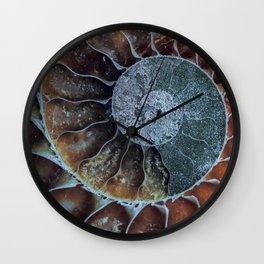 Spiral Ammonite Fossil Wall Clock