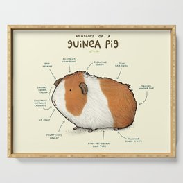Anatomy of a Guinea Pig Serving Tray