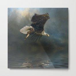 Bald Eagle Fishing Metal Print