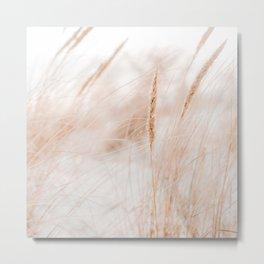 Beach Grass Pastel Colored Photo | Plantlife Photography | Warm Glow On Beach Grass Metal Print