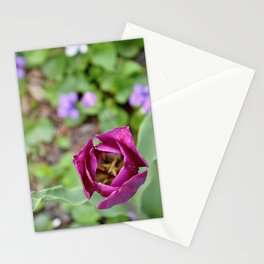 Spring Tulip Stationery Cards