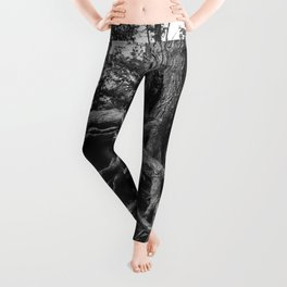 Putting Down Roots Leggings