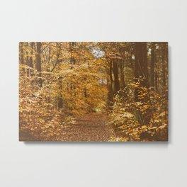Golden Leaves Of Autumn Metal Print