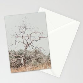 One tree in nature neutral colors photography in Israel  Stationery Cards