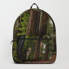 Redwood Forest Adventure VII - Nature Photography Backpack