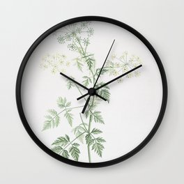 Vintage Hemlock Flowers Illustration Wall Clock