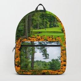 Photo USA North Carolina Nature park Gazania Lawn Trees Parks Backpack