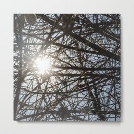 Forest Branches Pattern and Sun Rays Metal Print
