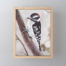 Downy Woodpecker painting Framed Mini Art Print