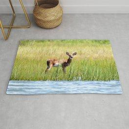 Watercolor Deer, Eastern Whitetail 18, Janes Island, Maryland Rug