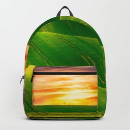 LUCKY LAND Backpack
