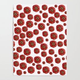 Red Poppies Transparent Design Poster