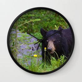 Black bear munches on some dandelions in Jasper National Park Wall Clock