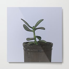 The Plant Bianca Watered Metal Print