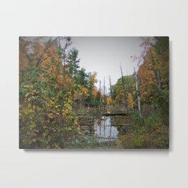 Shelda Creek, Leelanau County Metal Print