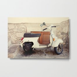 Going for a Ride? Metal Print