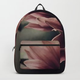 Sunday afternoon rose Backpack