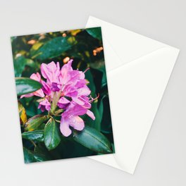 Back in the 70's jungle Stationery Cards