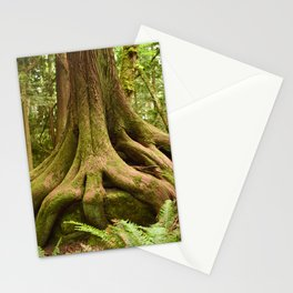 Old Growth Tree Roots Forest Woods Washington Northwest Boulder Geology Outdoors Landscape Stationery Cards
