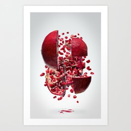 Flying Pomegranate Art Print