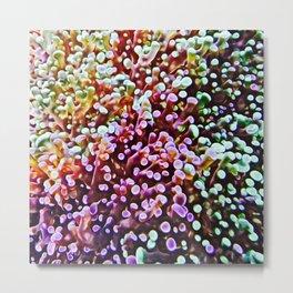 Living Reef Metal Print