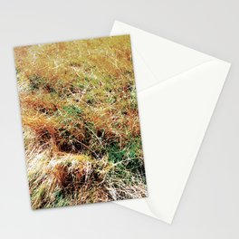 Newport National 09 Stationery Cards