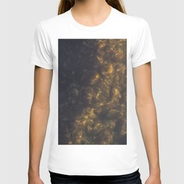 The stones covered with algae illuminated with the sun in the sunset T-shirt